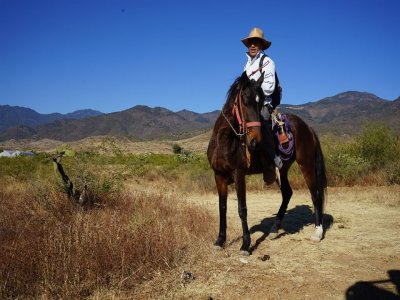 Horseback riding through Oaxaca 5 hours