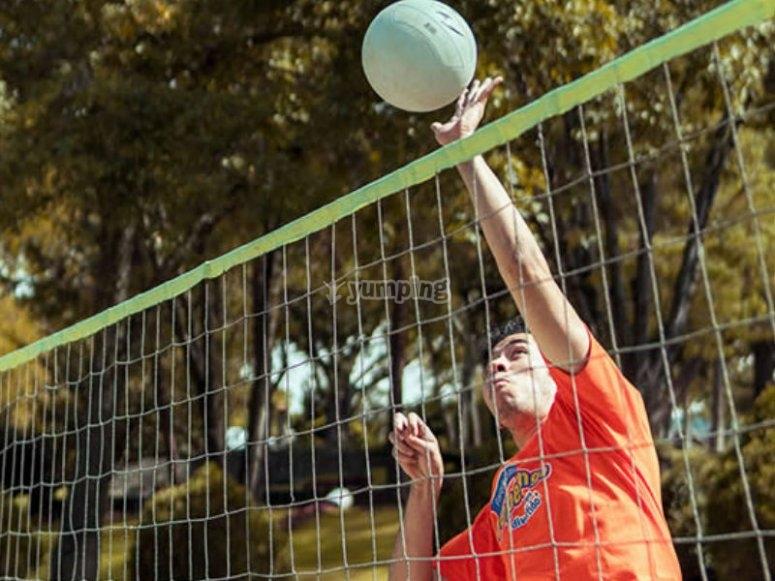Voley ball court