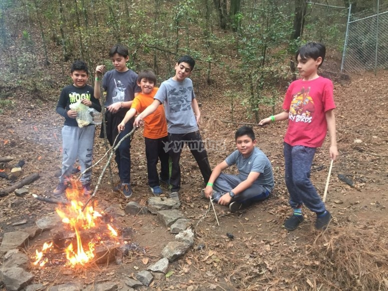 Learn to make campfires