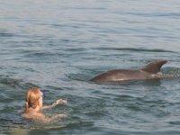 Natacion con delfines