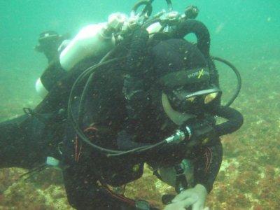 Vallarta Undersea Buceo