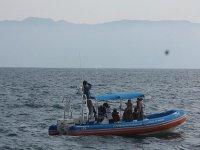 Tour de avistamiento de cetaceos