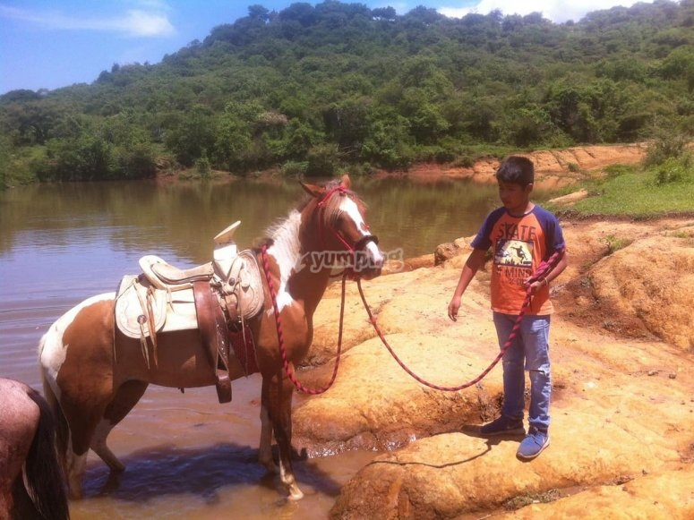 Child with horse on the river