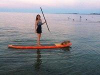 Surf paddle con mascota
