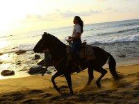 Siente la libertad de cabalgar en la playa
