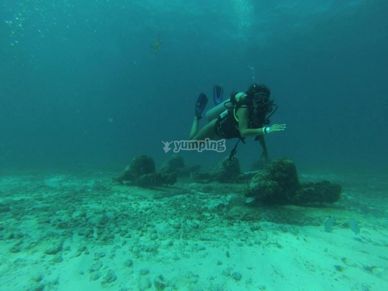 Explora las profundidades del oceano