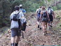 Disfruta de una gran caminata por las selva