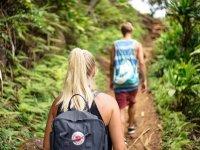 Hiking por la selva de Sayulita