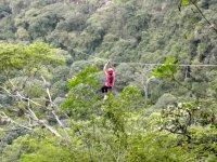 Canopy sobre la selva