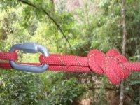 Arnes y cuerdas