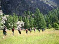 Walking the mountain