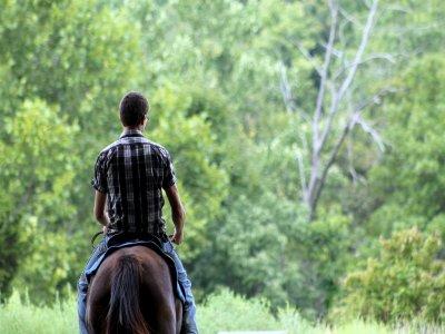 Paseo en caballo en la Sierra de Gomas por 2 Horas