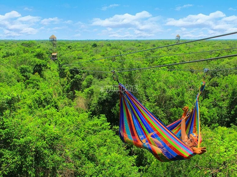 A very special zip line