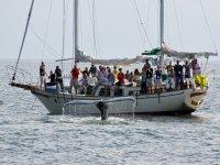 avistamiento de ballenas desde el barco