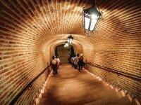 Los pasillos de Freixenet
