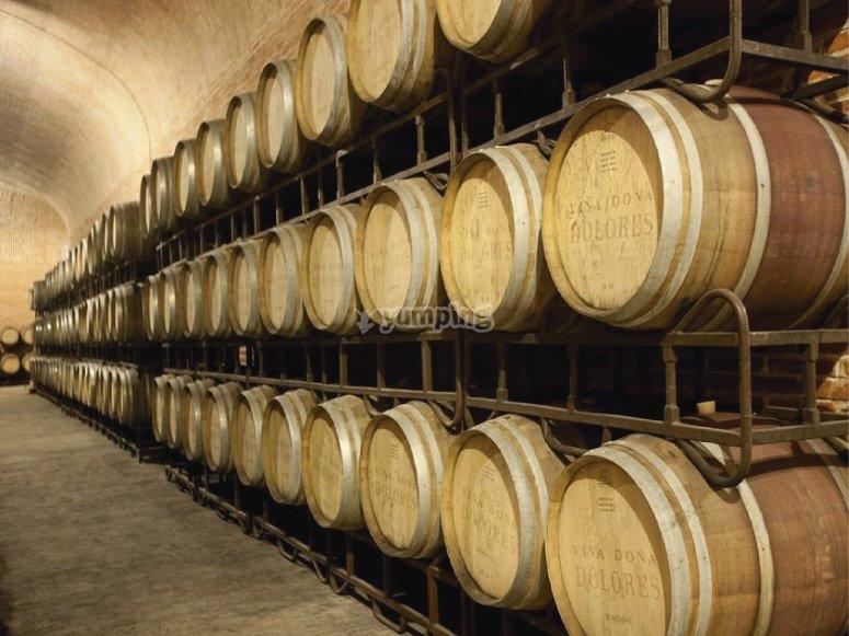 Freixenet barrels