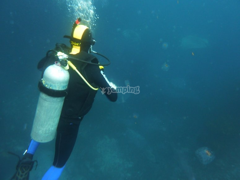 Diving nitrox tank
