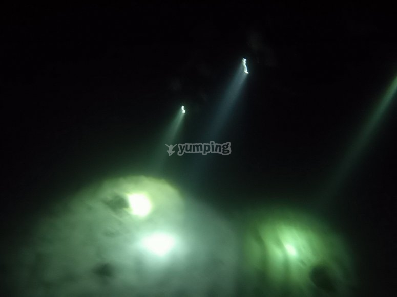 Dive with flashlights