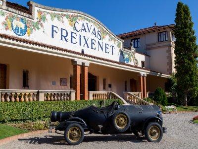 Visit to vineyards and Magic Town Bernal Querétaro