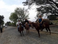 Tequila horseback riding