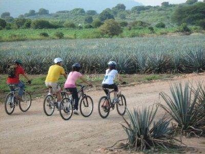 Aventúrate por Jalisco Ciclismo de Montaña