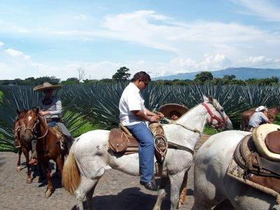 Aventúrate por Jalisco