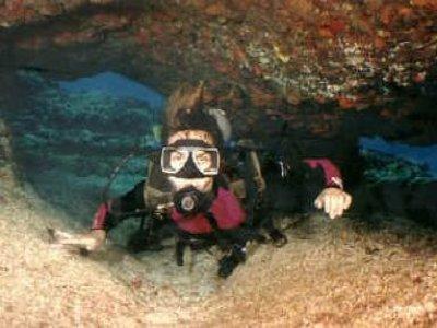 Blue Peace Diving