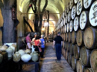 Private tour by distilleries in Tequila 8 hours