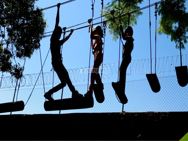 Canopy and Zip Line