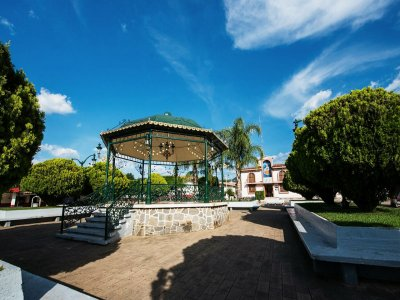 Raicilla Tour in Mixtlán and Guachinango