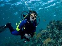 Buceando en el fondo del mar