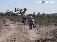 Walking through Wirikuta