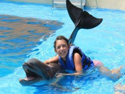 Vallarta Adventures Nado con Delfines