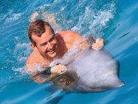 Diversión sobre un delfin
