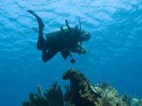 Buceador en las profundidades