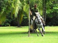 Cabalgata por la selva