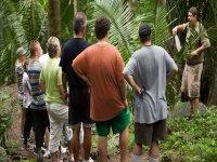 Caminata por la jungla
