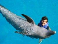 Nadando con delfin