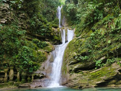 Woods and jungle Tour of Mexico 8 days & 7 nights