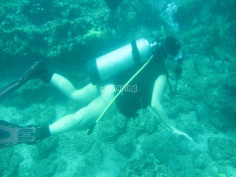 Buceando en Islas Marieta