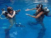 Curso PADI Scuba Diver