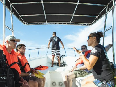 Private speedboat tour in Yelapa 7 hours