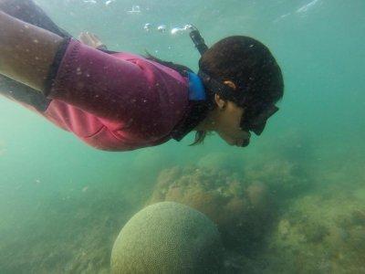 Selky Mexico Snorkel