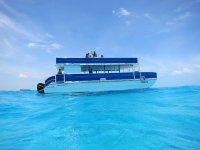 Surcando el mar azul