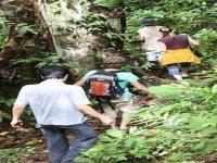 Explorando la flora y fauna