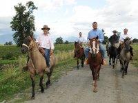 Horseback riding in groups