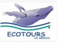 Ecotours de México Buceo