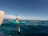 Ruta en kayak en Puerto Vallarta