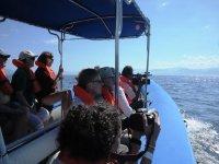 Disfrutando de la vida marina en Vallarta