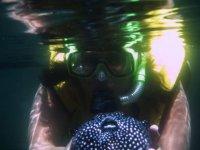 Pez y snorkel